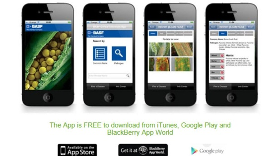 Cereal Disease ID App