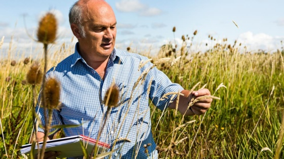 man looking at plant with notepad
